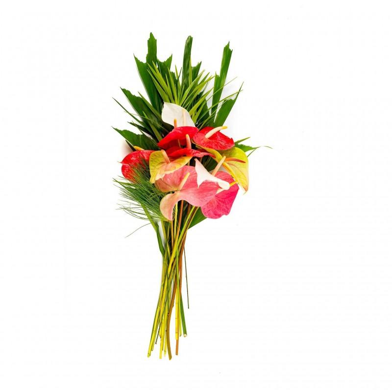 Anthurium Flowers (Lrg)