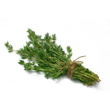 Thyme (Fine leaf) per bdnl