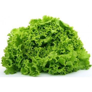 Lettuce per hd