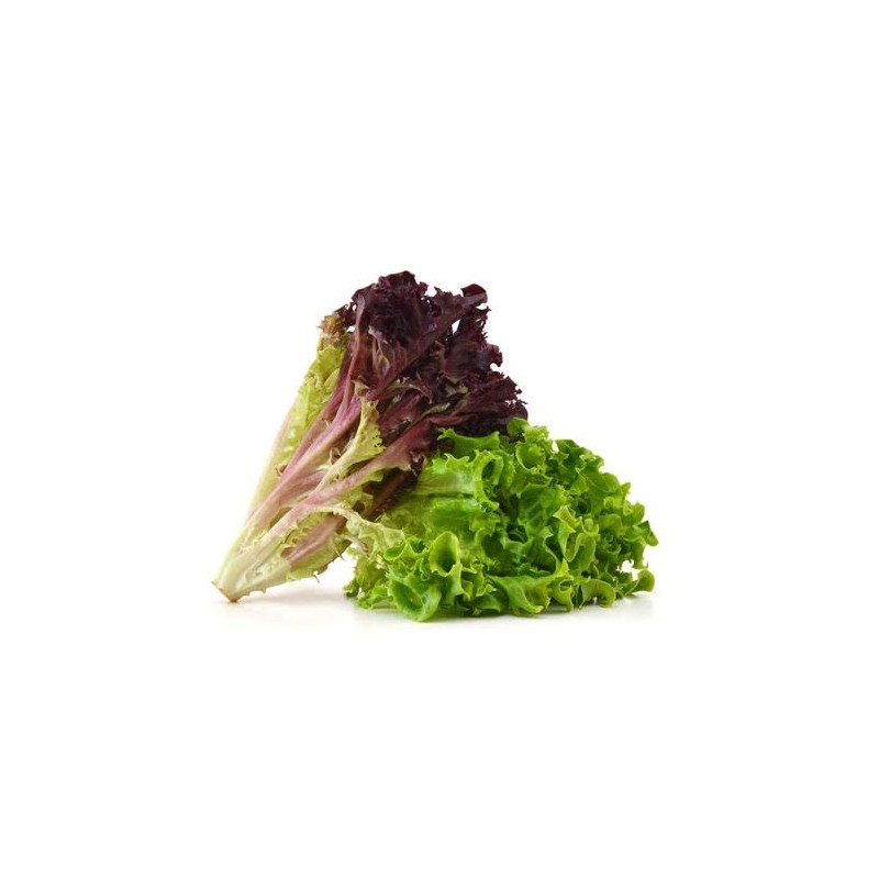Artisan lettuce mix