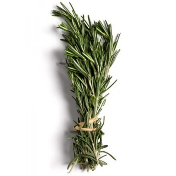 Rosemary per bdnl